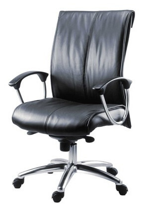 Executive leather chair example